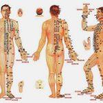 Kỳ kinh bát mạch các mạch phụ thuộc
